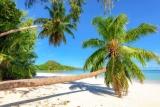 Leitfaden für den Urlaub auf den Seychellen