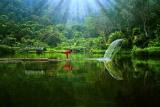 Sri Lanka eine der schönsten Inseln der Welt.