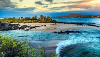 Reisen zu den Galapagos Inseln
